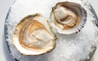 Ford's Partner Profile – War Shore Oyster Company